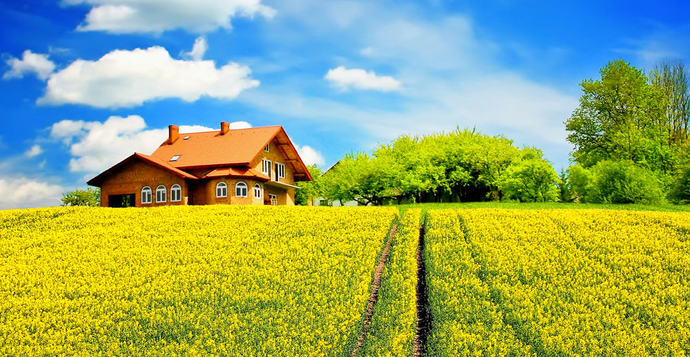 USDA Rural Mortgage Loans |  Lendem Financial